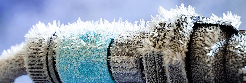 news-frostschaden